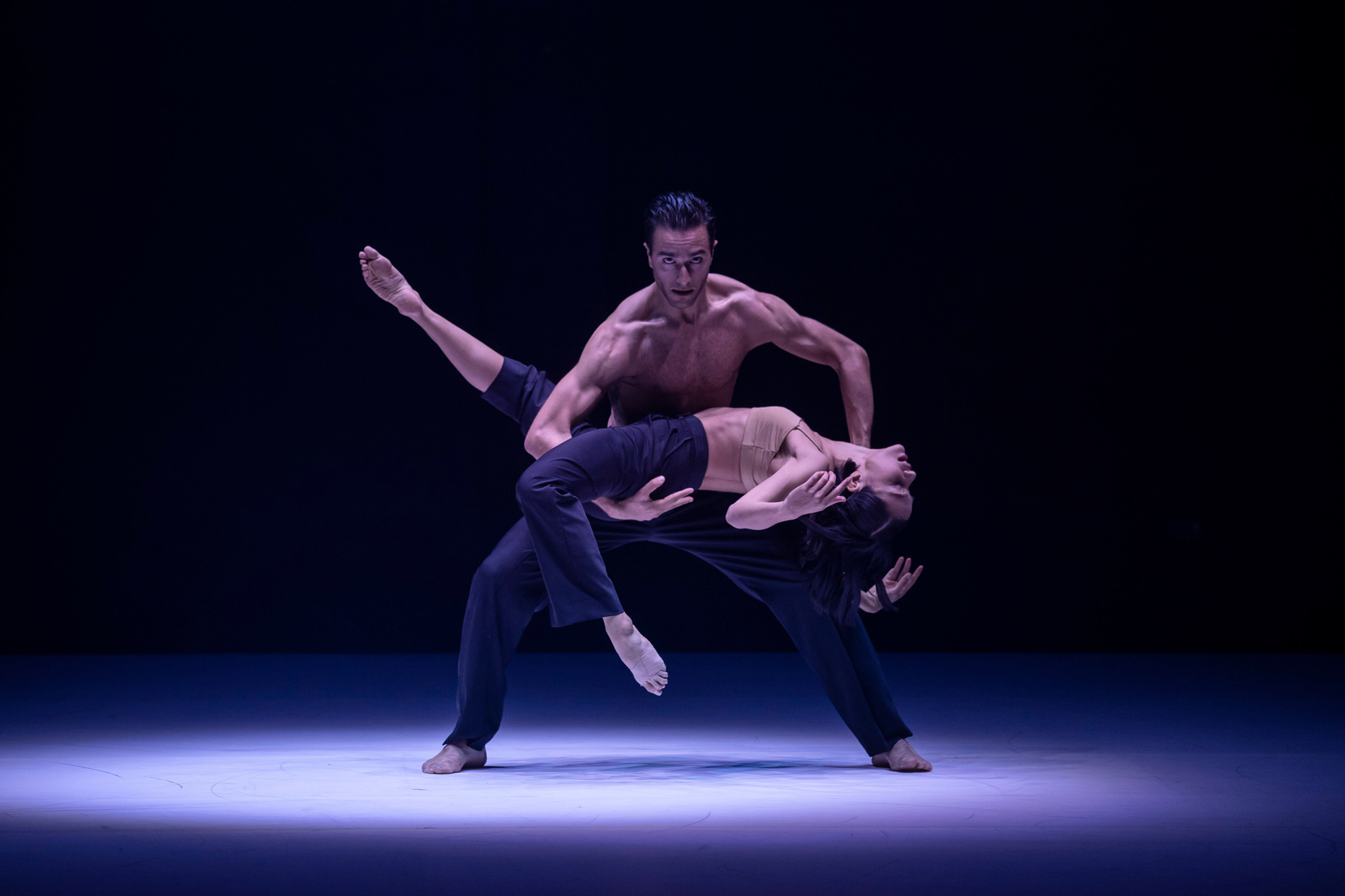 Sydney Dance Company Presents ab